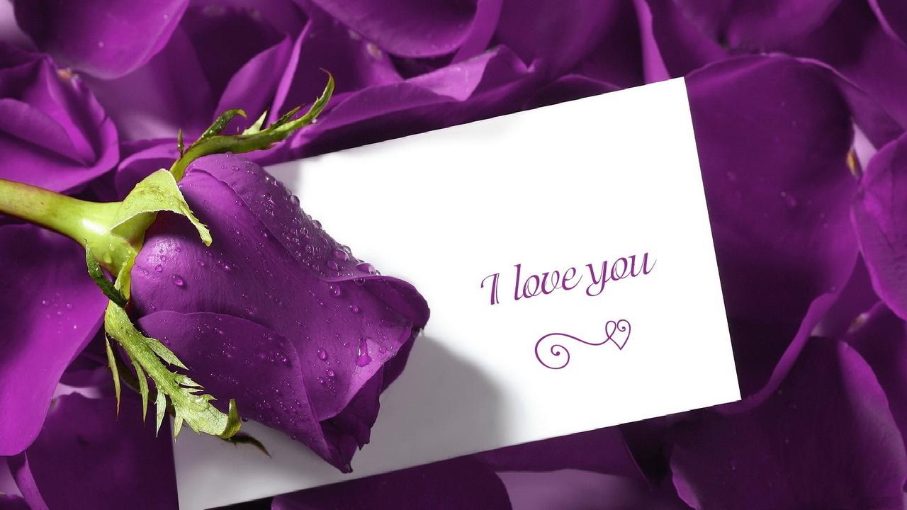Открытка цветы я тебя люблю, открытки стихами