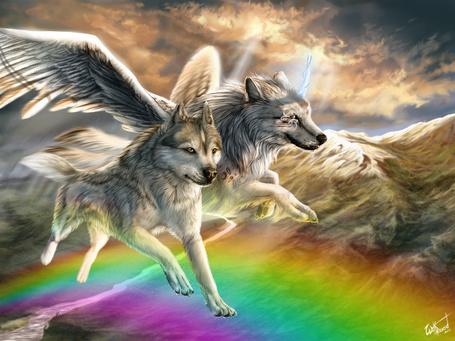 Фото Два крылатых волка летят по радуго на фоне гор и неба