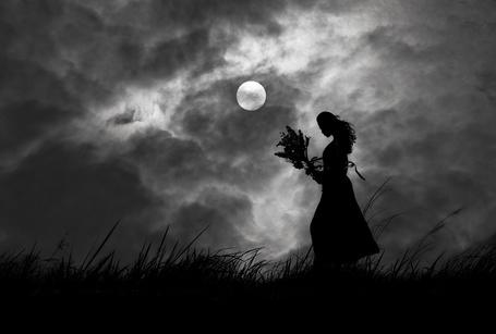 Фото Силуэт девушки с букетом цветов на фоне ночного неба с луной, фотограф Hengki Lee