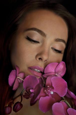 Фото Работа Night Orchid / ночная орхидея от endegor