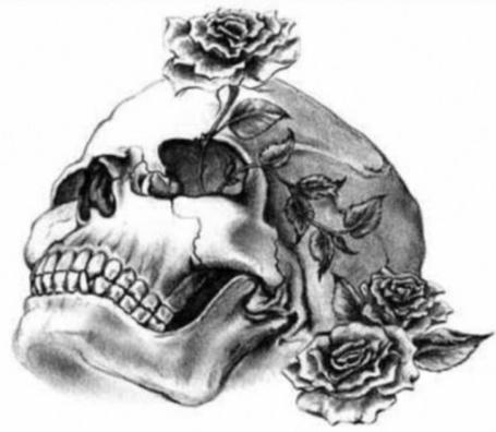 Фото Человеческий череп, три розы одна из них в глазнице