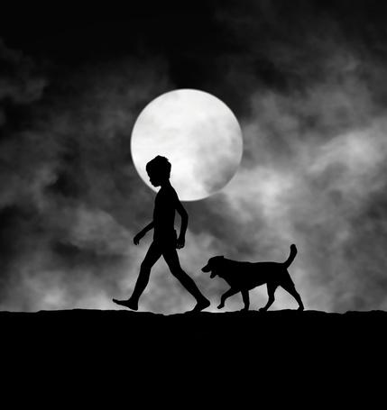 Фото Силуэт идущего мальчика и пса на фоне полной луны, фотограф Hengki Lee / Хенгки Ли