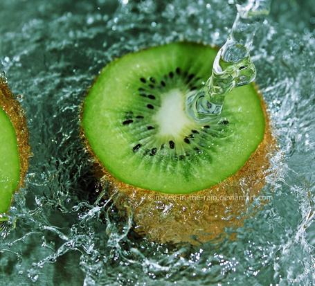 Фото Разрезанный киви в воде, работа fresh and green от naked-in-the-rain (© zmeiy), добавлено: 12.08.2013 10:04