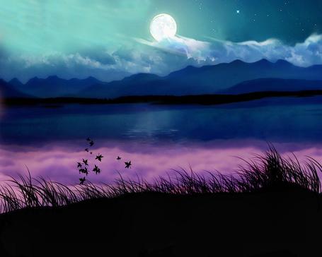 Фото Полная луна на небе, на переднем плане трава и листочки