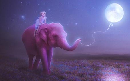 Фото Смеющаяся милая девочка, сидящая на спине розового слона, шагающего по цветочному полю с привязанной к хоботу луной в виде надувного воздушного шарика