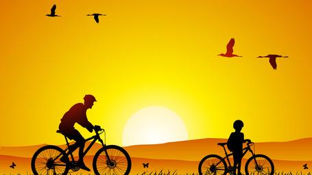 Фото Велосипедная прогулка отца и сына по траве на фоне заходящего яркого солнца и летящих в небе птиц