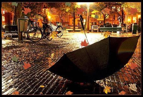 Фото Черный зонтик, лежащий на мокрой мостовой, с падающими на него и вокруг осенними листьями на фоне здания, освещенного ярким электрически светом, стоящими возле телефонного аппарата велосипедами