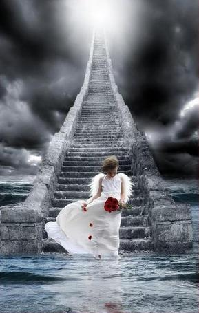 Фото Девочка-ангел спускается по лестнице, обрывая лепестки цветов