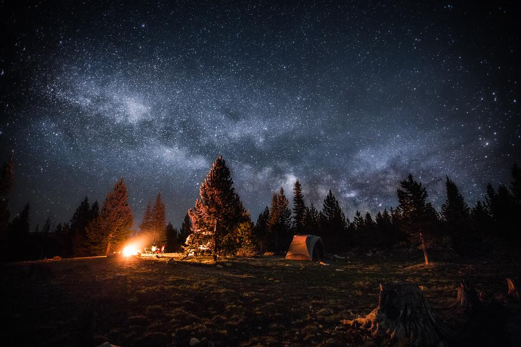 бесплатно фото звездного неба в лесу них принадлежит одному