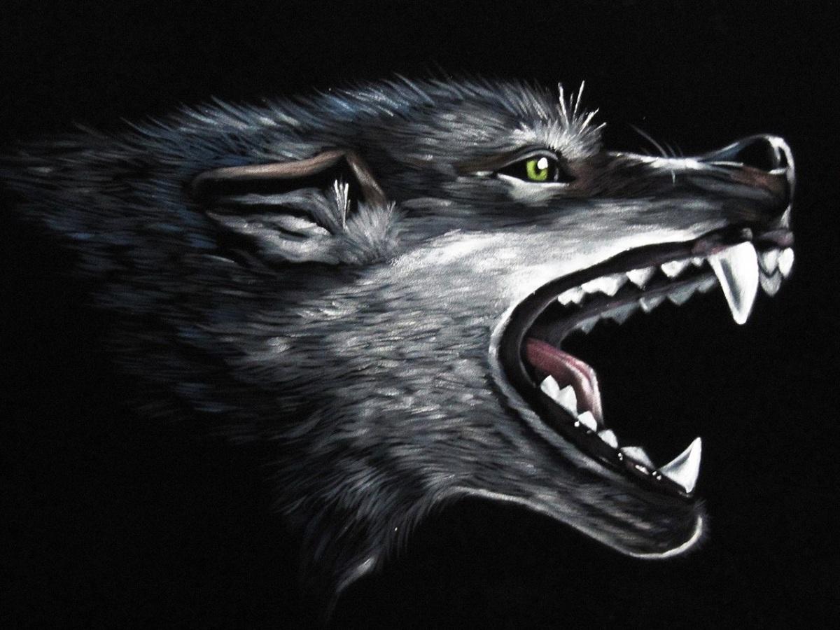 картинка голограмма волчий оскал этом, здесь речь