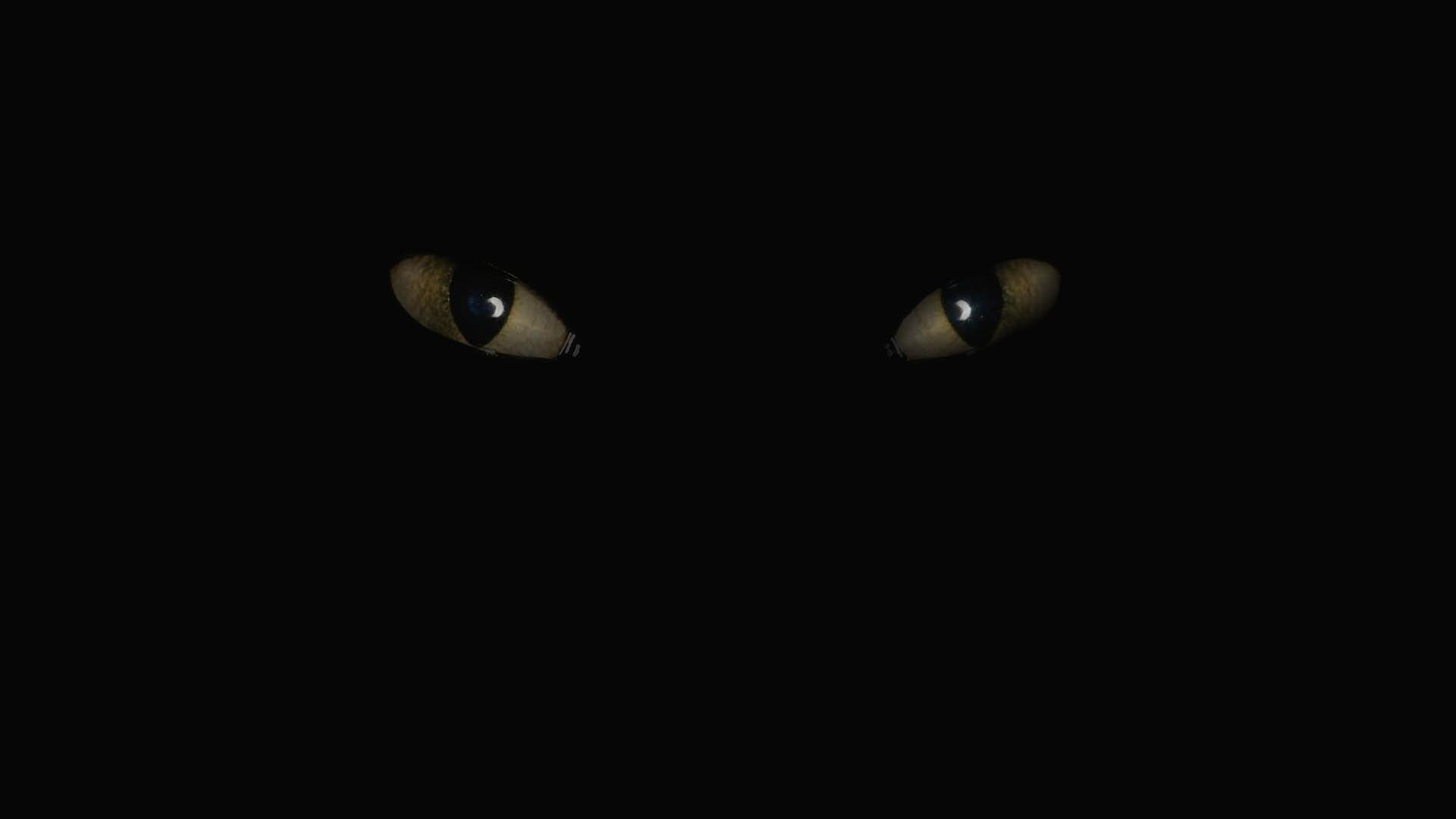 Фото кота в сапогах из сказки шарля перро рисунок без