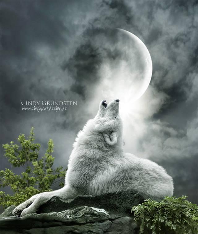 Картинка воет волк