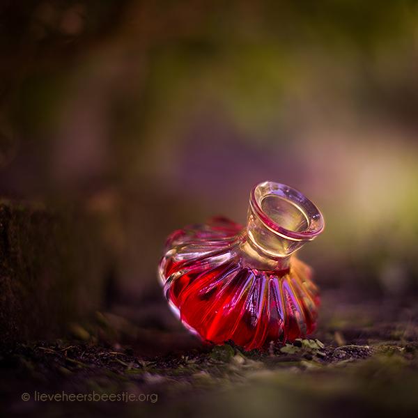 Фото Бутылочка розовых духов на земле, фотограф Lieveheersbeestje