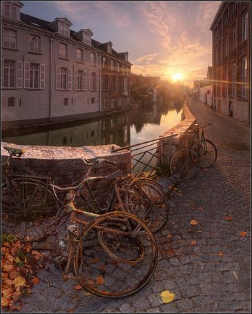 Фото Восходящее солнце освещает набережную водного канала и стоящие у каменного ограждения ржавые велосипеды в окружении осенних листьев, город Брюгге, Бельгия / Brugge, Belgiu, фотография EGRA / ЕГРА