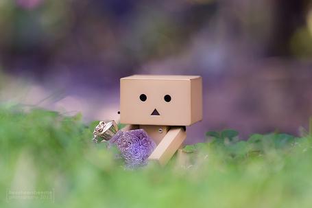 Фото Картонный человечек Danbo / Данбо сидит в траве, держа в руках флакон духов, фотограф lieveheersbeestje