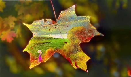Фото Осенний кленовый лист с изображением девушки под зонтом в поле, автор Игорь Зенин