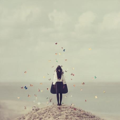 Фото Девушка, над которой летают бабочки, стоит на фоне моря и неба, автор oprisco
