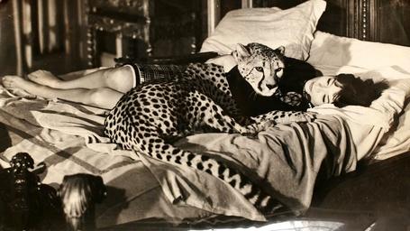 Фото Леопард охраняет сон спящей девушки