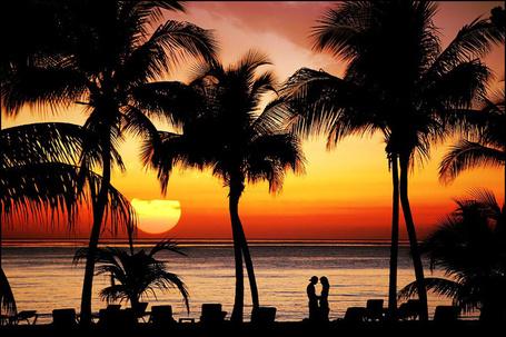 Фото Силуэты парня и девушки на фоне моря, пальм и золотого заката