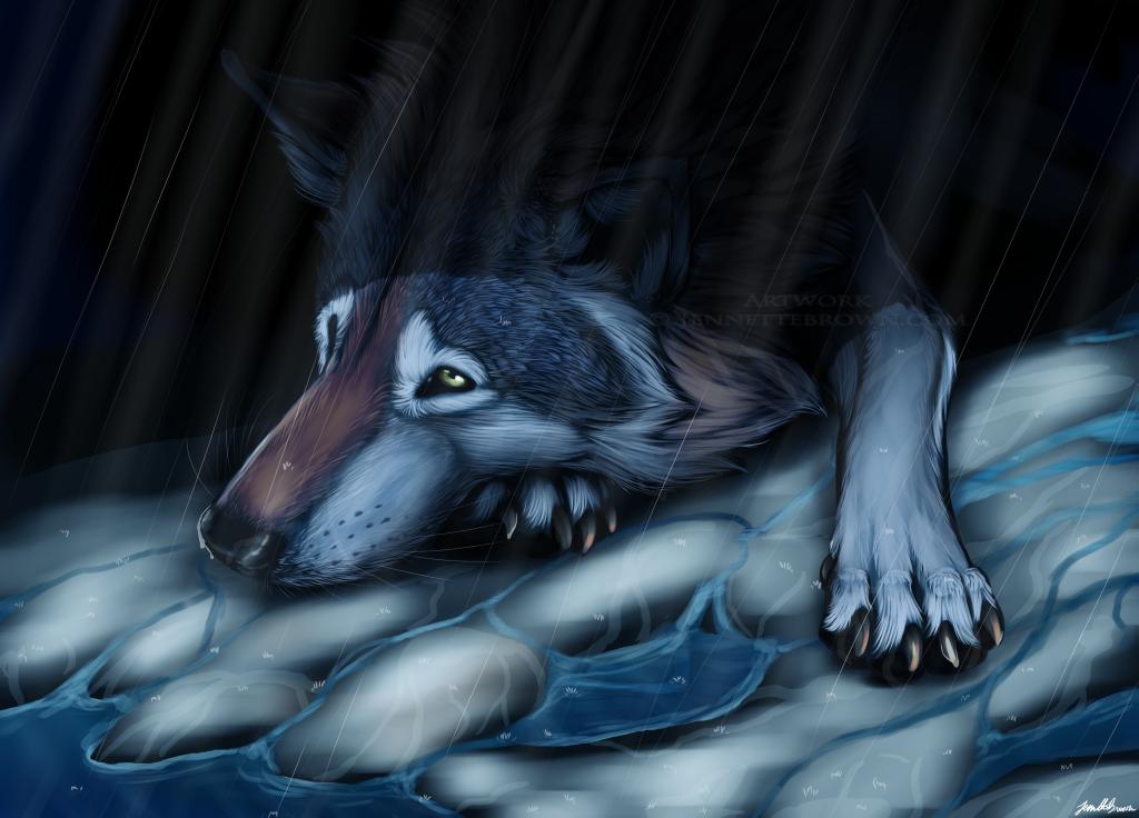 Картинка волка плачущего