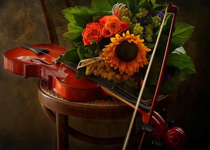 Фото музыкальные инструменты и цветы