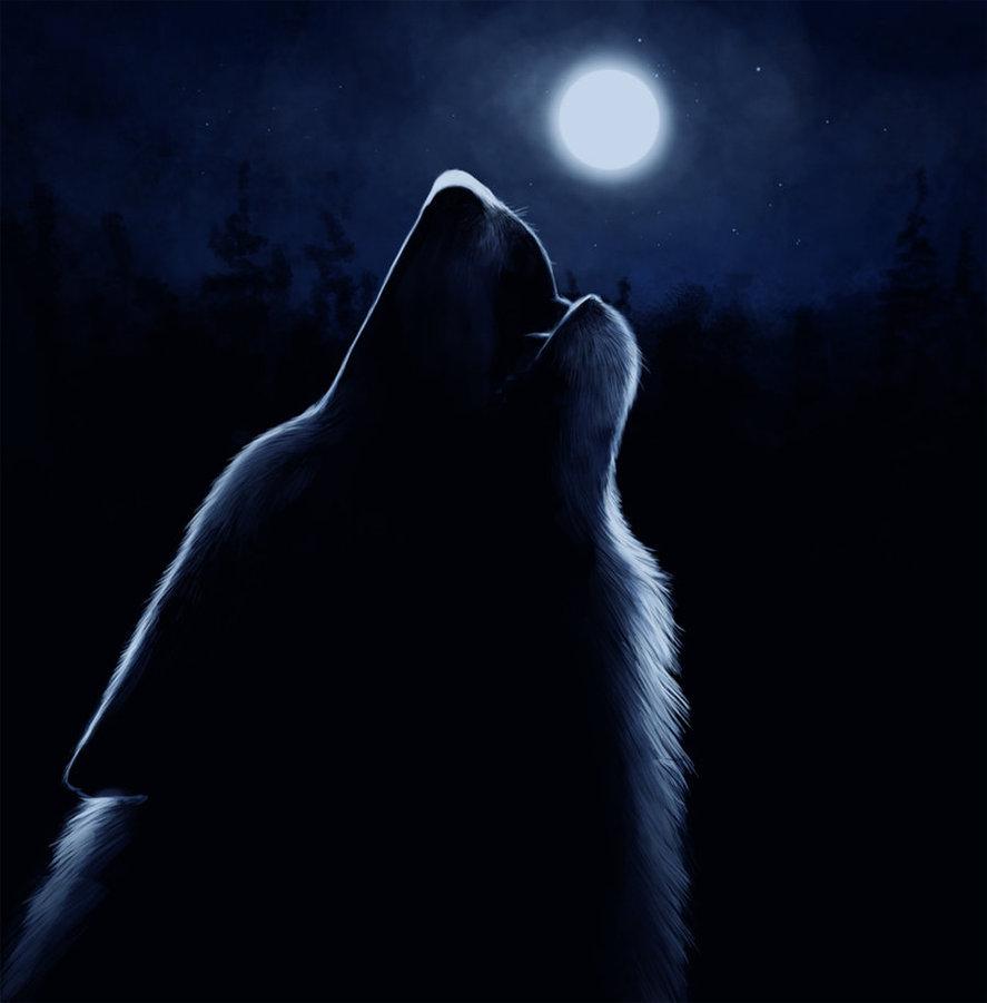 происходит картинка волк воет на луну сидя первыми