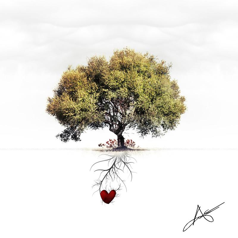 Фото Дерево с зеленой кроной на белом фоне, в корнях ...
