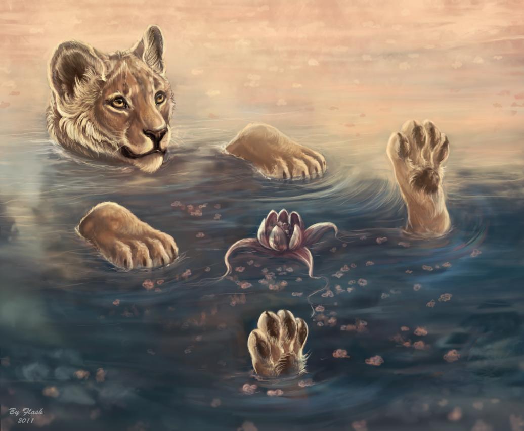 Фото Львица плавает на спине, художница flashw: http://photo.99px.ru/photos/128897