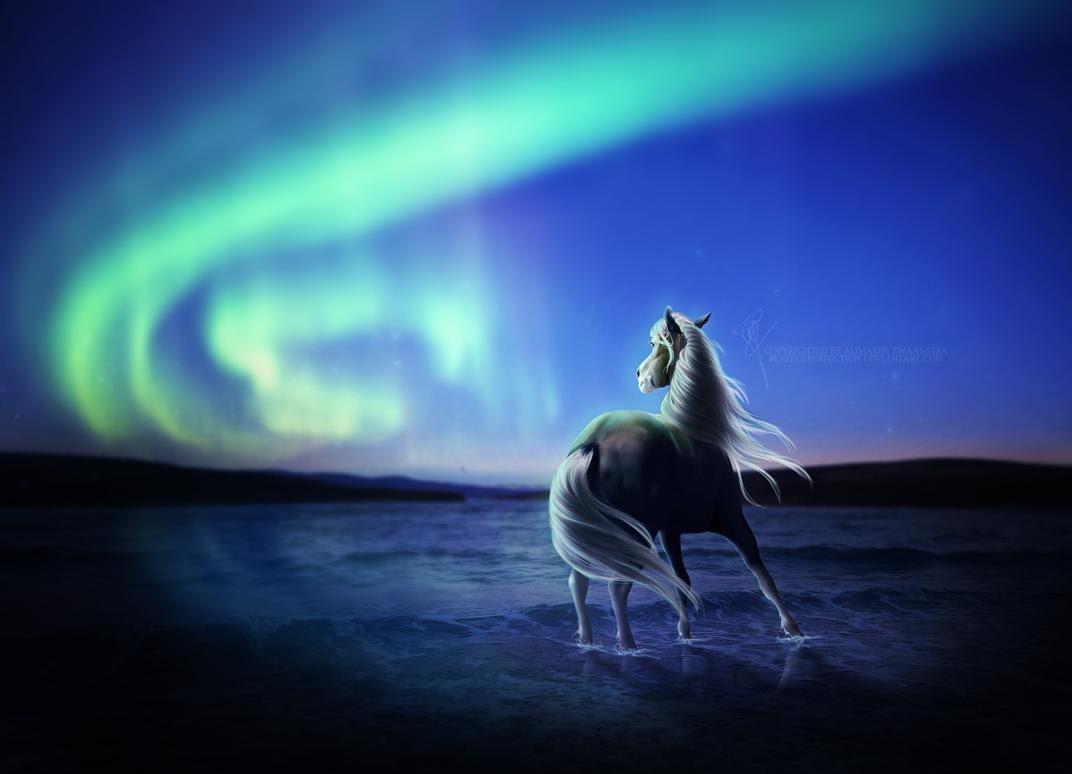 лошадь картинки ночью нельзя было фото