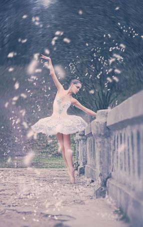 Фото Балерина держится за ограду на фоне летающих лепестков