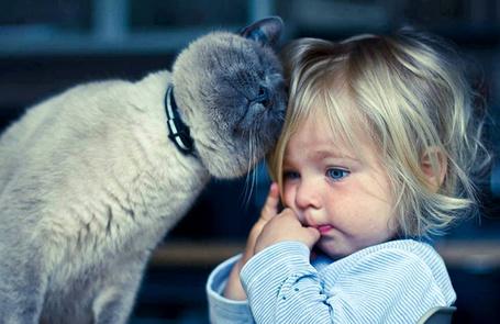 Фото Кот ластится к маленькой белокурой девочке (© Princessa), добавлено: 03.10.2013 04:31