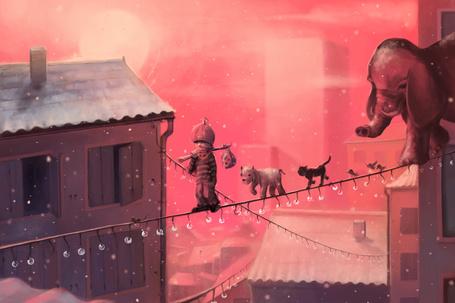 Фото Мальчик, щенок, кошка, птицы и слон идут по подвешенной гирлянде с лампочками между домами, иллюстратор Cyril Rolando