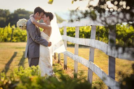 Фото Влюбленные молодожены обнимаются у забора на винограднике