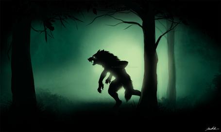 Фото Оборотень в мрачном лесу, художник sugarpoultry