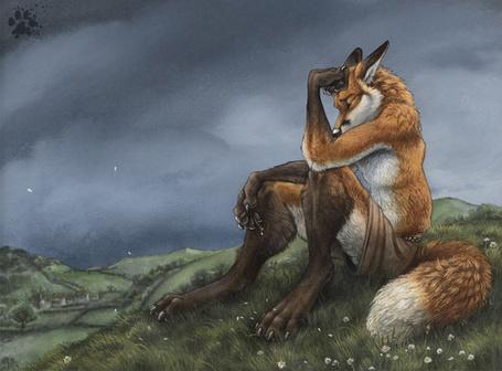 Фото Лиса сидит на холме, художник screwbald