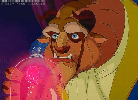 Фото Чудовище из мультика Красавица и Чудовище / Beauty and the Beast, прислонился лапой к увядающей розе