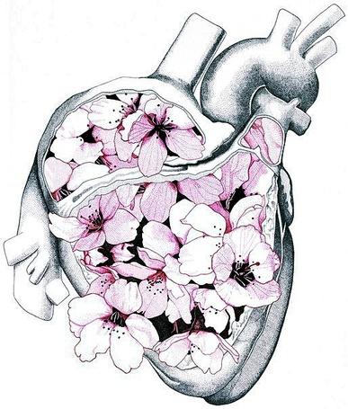 Фото Сердце, заполненное розовыми цветами, иллюстратор Edward Blake Edwards / Эдвард Блейк Эдвардс