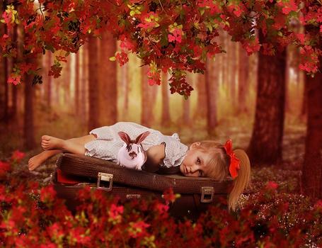 Фото Девочка лежит на чемодане и рядом сидит кролик, над ними ветки с осенней листвой