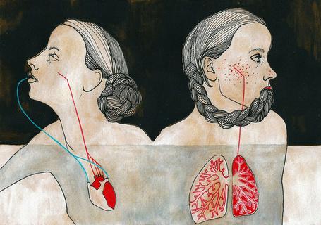 Фото Изображенные сердце и легкие изнутри двух девушек, автор Amylin Loglisci