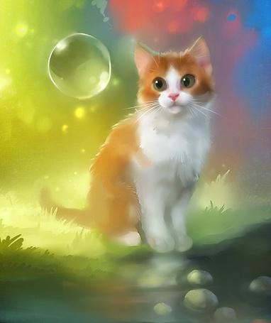 Фото Бело-рыжий кот сидит на траве и смотрит на мыльный пузырь