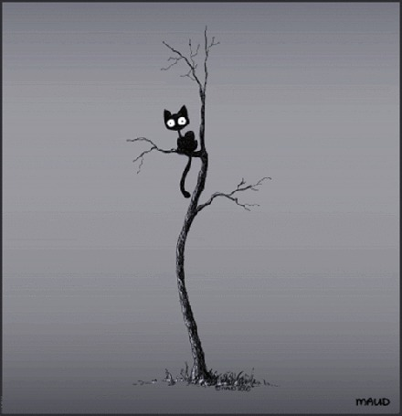 Фото Черная кошка сидит на дереве на сером фоне (© Banditka), добавлено: 12.05.2013 01:11