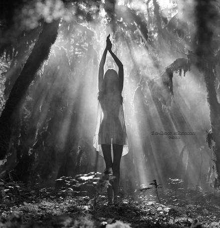 Фото Девушка с поднятыми вверх руками стоит в солнечном свете, фотограф Федор Симмуль