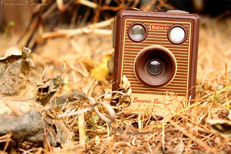 ���� ������ ����������� Kodak Brownie Flash T / �����, ����� � ����� �����, �������� �������� �������� / Fernanda Turegano (� Princessa), ���������: 02.11.2013 03:50