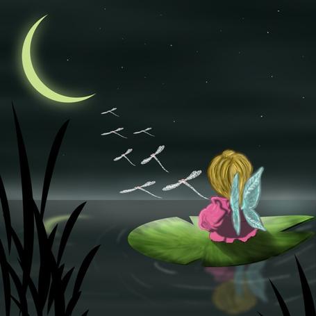 Фото Дюймовочка сидит на листе кувшинки и смотрит на летящих стрекоз, на небе месяц