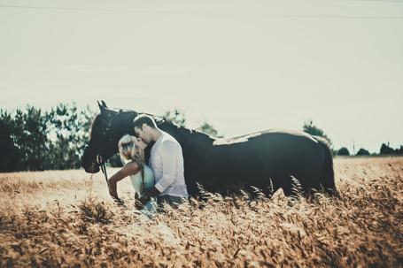 Фото Monika and Patryk / Моника и Патрик, целуются возле лошади, фотограф Magdalena Cichecka