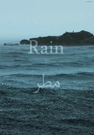 Фото Бушующее море под дождем (Rain / Дождь)