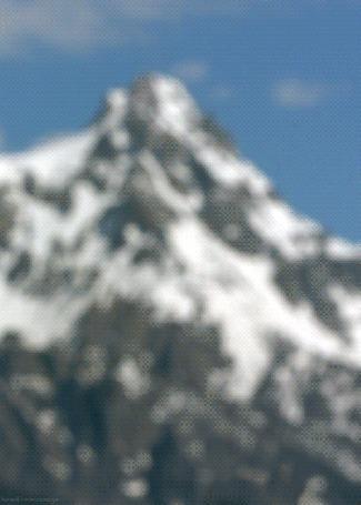 Фото Колибри-каллиопа гонится за охристым колибри, на фоне гор
