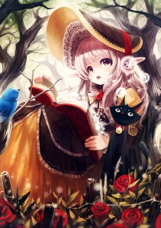 Фото Девушка-эльфийка читает книгу, рядом сидит черная кошка, напротив сидит птица