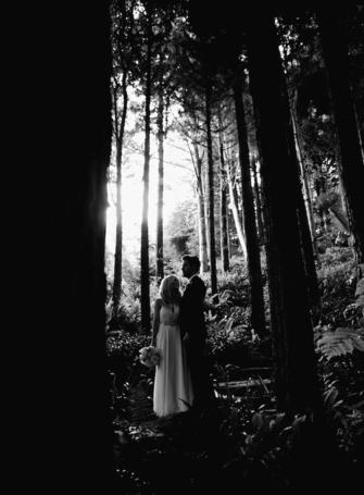 Фото Жених и невеста, стоят в лесу