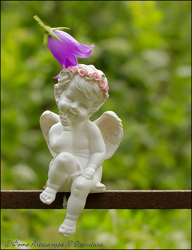 что фото красивого ангела счастья дали